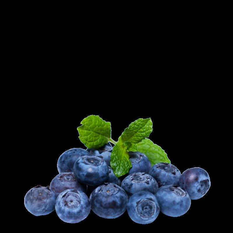 ČUČORIEDKY EXTRA / Blueberry (Extra) - aróma TPA The Perfumers Apprentice